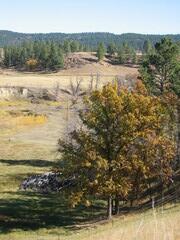 Wyoming: